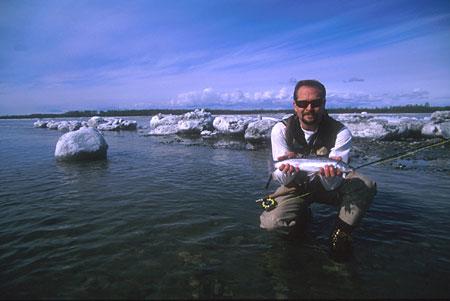Alaska  Fishing on Dolly Varden Fly Fishing In Alaska Contributor Alaskaphotography Com